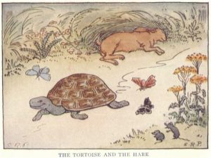 The_Tortoise_and_the_Hare