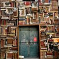 books surrounding a door